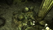 FNV Pile of deathclaw eggs in Dead Wind Cavern