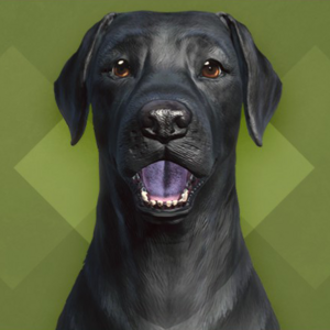 FO4 Creation Club - Black Labrador.png