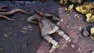 FO76 Brotherhood corpse Firebase Major