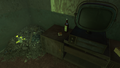 FO4 Ladies auxiliary tape 8