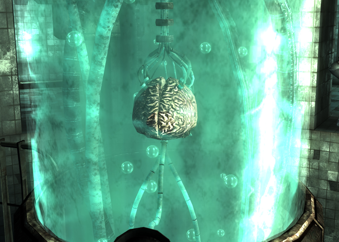 Calvert (brain)