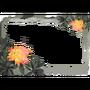 Atx photomode frame floraraydodendron l.webp