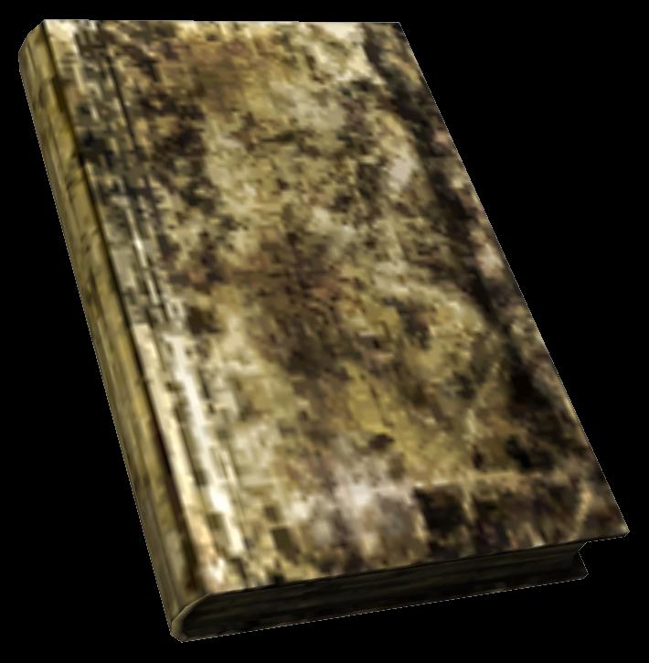 Маленькая испорченная книга