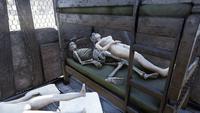FO76 301020 Skeleten player