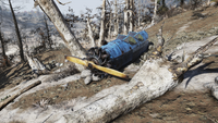 FO76 Crashed biplane Toxic Valley 4