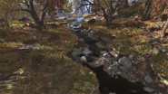 FO76 Flatwoods River 7