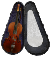 Stradivarius and case