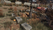 FO76 Halloween loc 12