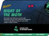 Night of the Moth