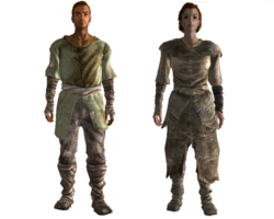 Wasteland settler outfit.png