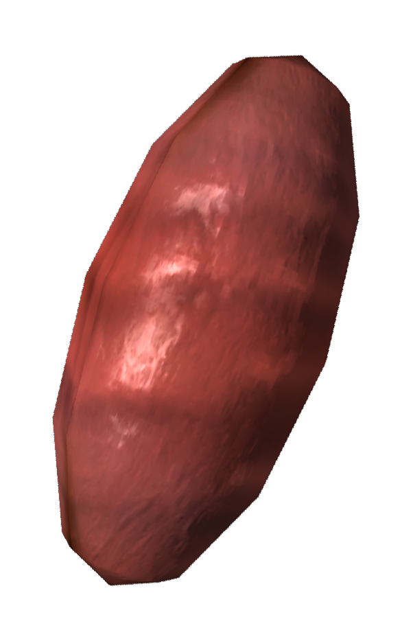 Fire ant egg