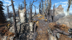 FO4FH Radiant Crest Shrine.png