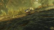 FO76 2121 Possum 1
