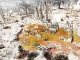Токсичный пруд и развалины