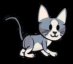 FOS Cat3.png