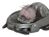 Robobrain interpolator