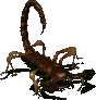 Radscorpion (Fallout)