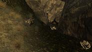 FNV Canyon wreckage 8