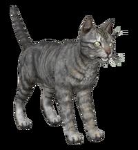 FO4HRTP Cat.png