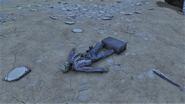 FO76 New Gad skeleton scene 2