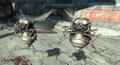 FO4 Black bloatflys attack