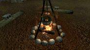 FNVHH Campfire
