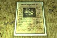 FNV Primm framed newspaper
