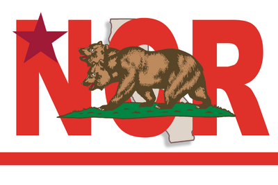 Fo2 NCR Flag.png