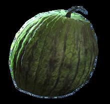 Fresh melon.png
