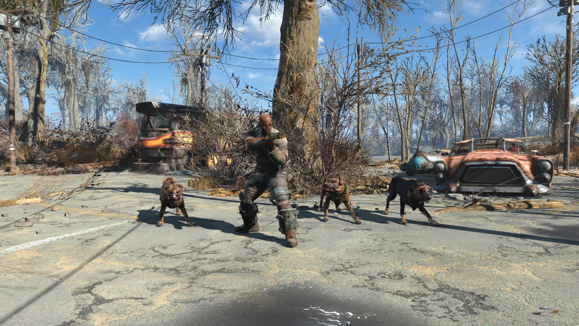 Боевой пёс (Fallout 4)