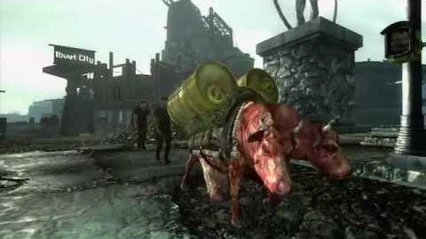 Fallout 3 Uitbreidingen