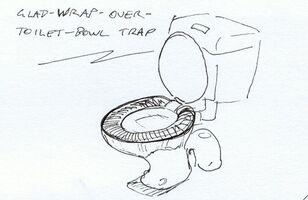 Glad Wrap Trap.jpg