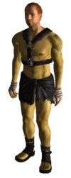 Wornslave outfit