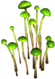 Glowing cave fungus.png