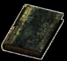 Large Burned Book.png