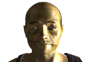 Driver Nephis head.png
