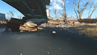 Fo4 PA Loc N NEponset.png