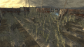 FNV Greenhouse 7.png