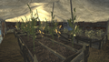 FNV Greenhouse 8.png