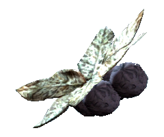 Wild tarberry.png