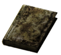 Small Burned Book.png