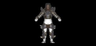 DLC04 Armor Disciples Heavy01 Torso M B Full.png