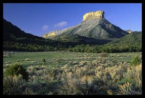 VB DD07 loc Mesa Verde.jpg