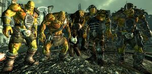 east coast vault 87 strain super mutant