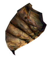Bug Meat.png