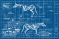Cyberdog poster 02.jpg