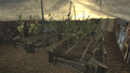 FNV Greenhouse 3.png