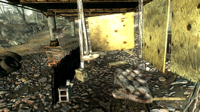 Fo3 Abandoned Camp Int.png