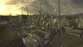 FNV Greenhouse 13.png