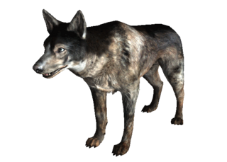 Dog FO3.png
